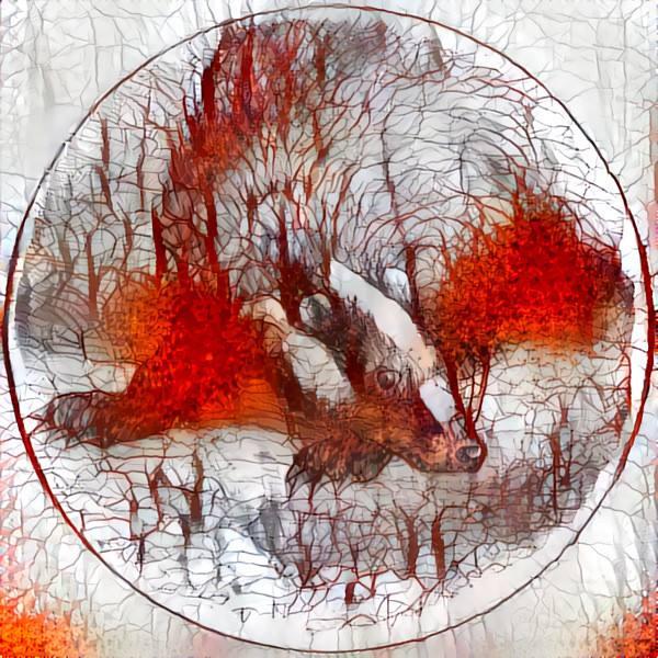 Emblème de l'équipe représentant un blaireau rouge